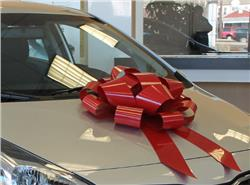 Car Bow Store - 22 in. Car Bow, Red